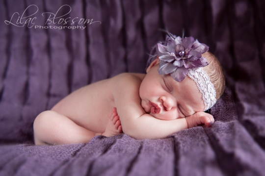©2013 Lilac Blossom Photography-19
